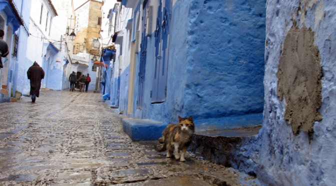 Tangled up in Chefchaouen